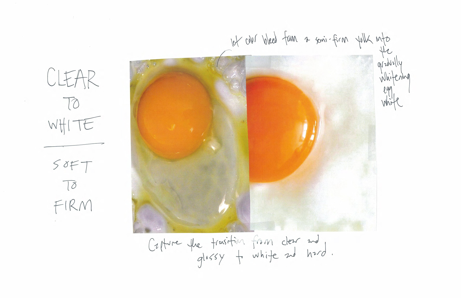 Egg Project for GlassLab by Abbott Miller
