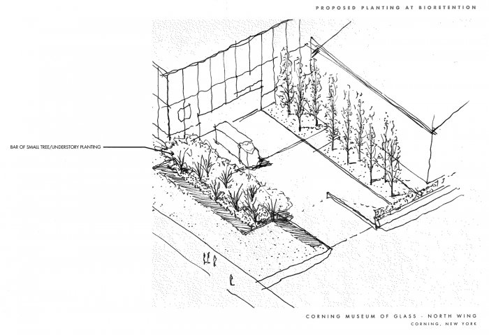 Sketch of the bioretention area by the Museum's loading dock