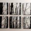 Winter Woods by Moshe Bursuker, 2012