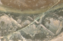Photomicrograph of Corning Ewer showing weathering and surface losses.