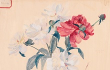 Tiffany Treasures: Design Drawings by Alice Gouvy and Lillian Palmié