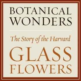 Botanical Wonders: The Story of the Harvard Glass Flowers