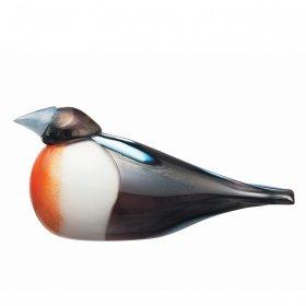 Imagination to Creation: Oiva's Birds