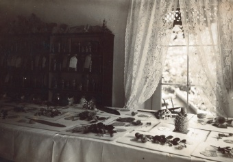 Figure 10. Models of glass flowers in the Blaschkas' studio before they were shipped to the Harvard Botanical Museum. Probably photographed by Rudolf Blaschka. Photo dated October 1891. Rakow Research Library, Bib ID 95860