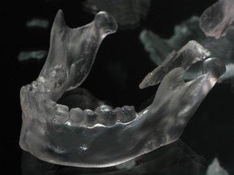 Detail of Pangaea by Anthony Cioe