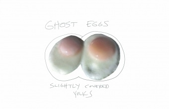 Egg Project for GlassLab by Abbott Miller