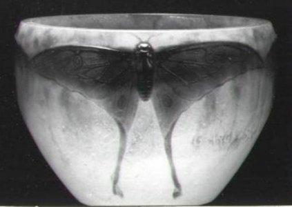 Bowl with Luna Moth