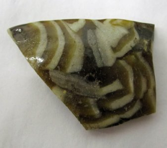Rim Fragment of Vessel