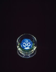 Rose Paperweight