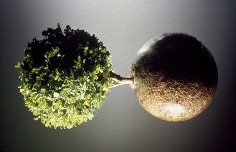 Balance [slide].