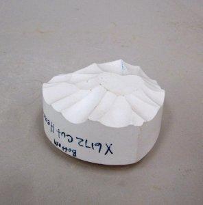 Plaster Model for Heart Hand Cooler (?)