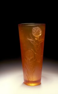 Leucospermum vase [slide].