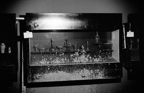 [Glass objects in flood-damaged gallery case] [picture].