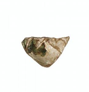 Fragment of Beaker or Bottle