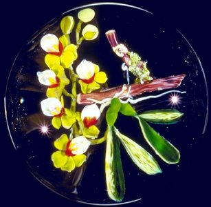 Paperweight with Orchid on Base