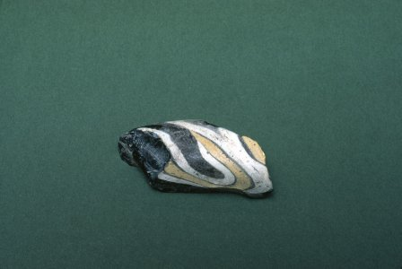 Snake (mosaic glass fragment)