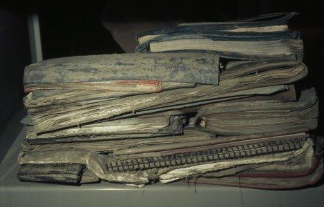 [Flood-damaged books covered in mud] [slide].