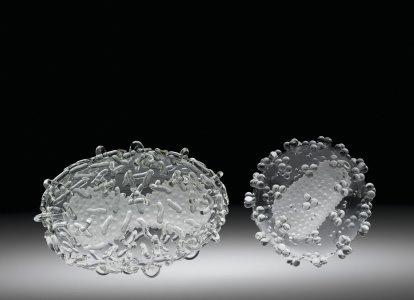 Smallpox Virus and HIV (Human Immunodeficiency Virus)