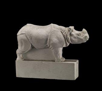 Rhinocéros (Rhinoceros)