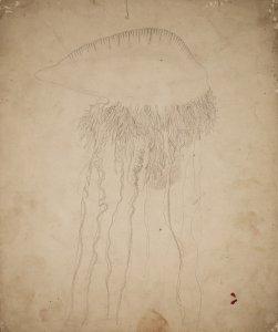 [Untitled] [art original].