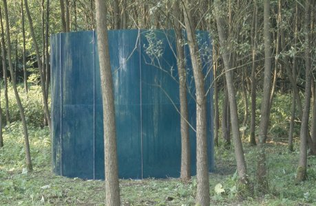 Blue cylinder in the willow forest, detail [slide].