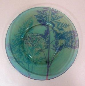 Polychromatic Glass Plate Sample
