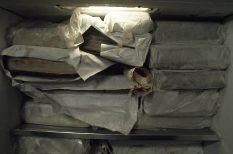 [Books are wrapped then frozen to prevent the growth of mold and bacteria, view 6] [slide].