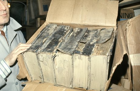 [Checking books for mold and decay] [slide].