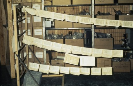 [Pages on support sheets drying on fish line] [slide].