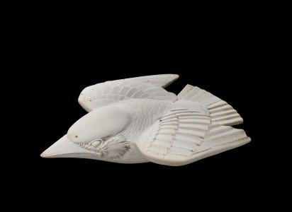 Martin-Pêcheur (Kingfisher)
