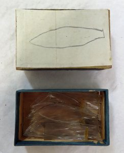Matchbox Containing 19 Glass Parts of Marine Animals