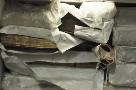 [Books are wrapped then frozen to prevent the growth of mold and bacteria, view 8] [slide].