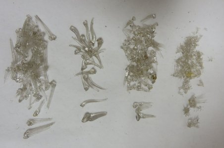 Matchbox Containing Assorted Glass Parts of Marine Animals (4 Types)