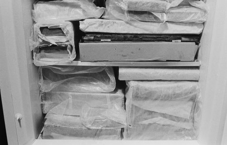 [Flood-damaged books were wrapped then frozen to prevent mold and bacteria growth, view 1] [picture].