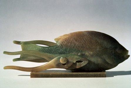 Cling fish [slide].