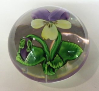 Paperweight with Viola