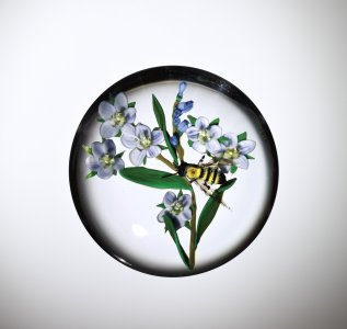 Paperweight with Bee