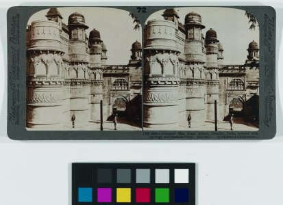 Celebrated Man Singh Palace, Gwalior, India covered with carvings and enameled tiles [graphic].