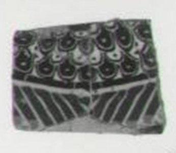 Wing Inlay