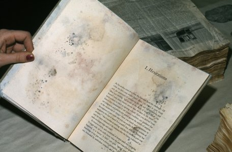 [One of David Fischer's test books showing signs of mold growth] [slide].
