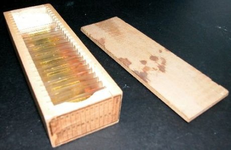 Box of 20 Slides of Mineral Specimens