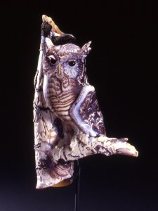 Flammulated owl on river birch [picture].