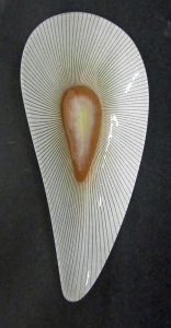 Teardrop-Shaped dish