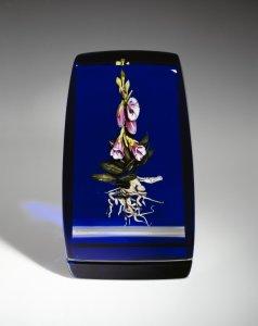 Foxglove botancial [picture].