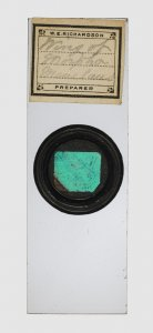 Microscope Slide Preparation