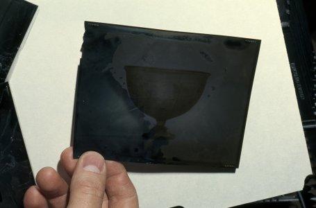 [Flood-damaged 4x5 transparency] [slide].