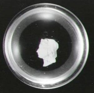 Paperweight with Sulphide of Queen Victoria