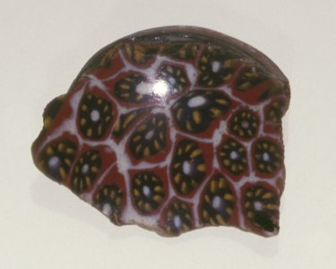Fragment of Mosaic Patella Cup
