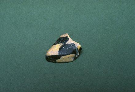Fragment of Snake