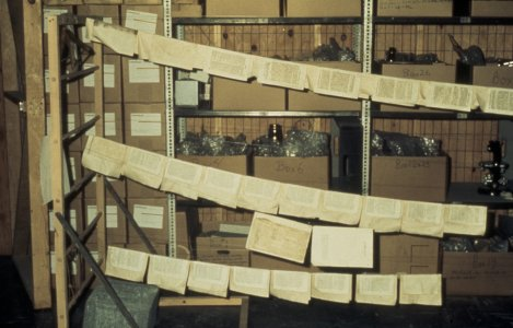 [Book pages on support sheets drying in the Acme building]